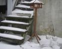 Irene-03 graavejr-trappe