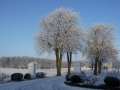 Anette_002_Vinter